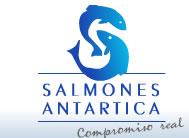 Salmones Antártica
